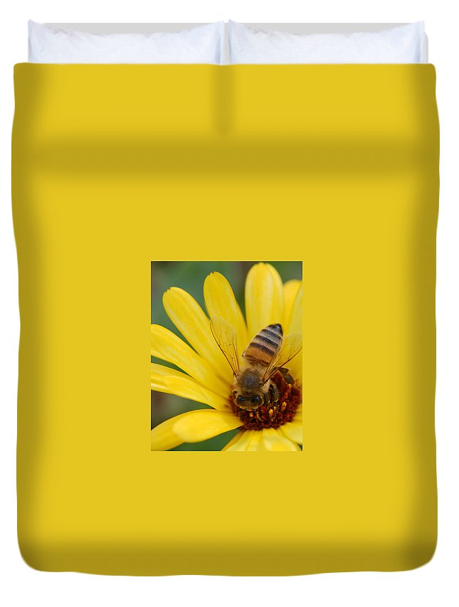 Bee Duvet Cover featuring the photograph Bee On Flower by Amy Fose