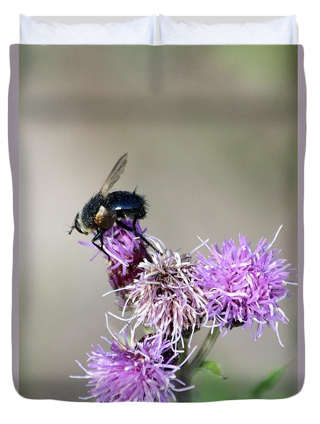Bee Duvet Cover featuring the photograph Bee On Thistle by Darla Wells
