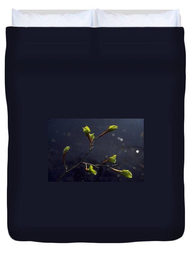 Green Duvet Cover featuring the photograph Beech Buds by Michael Mogensen