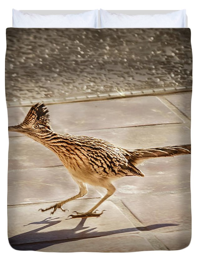 Greater Roadrunner Photographs Duvet Covers