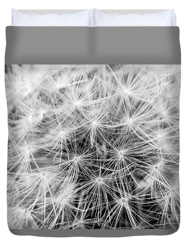 Dandelion Duvet Cover featuring the photograph Before The Breeze by Mark Mulkerin