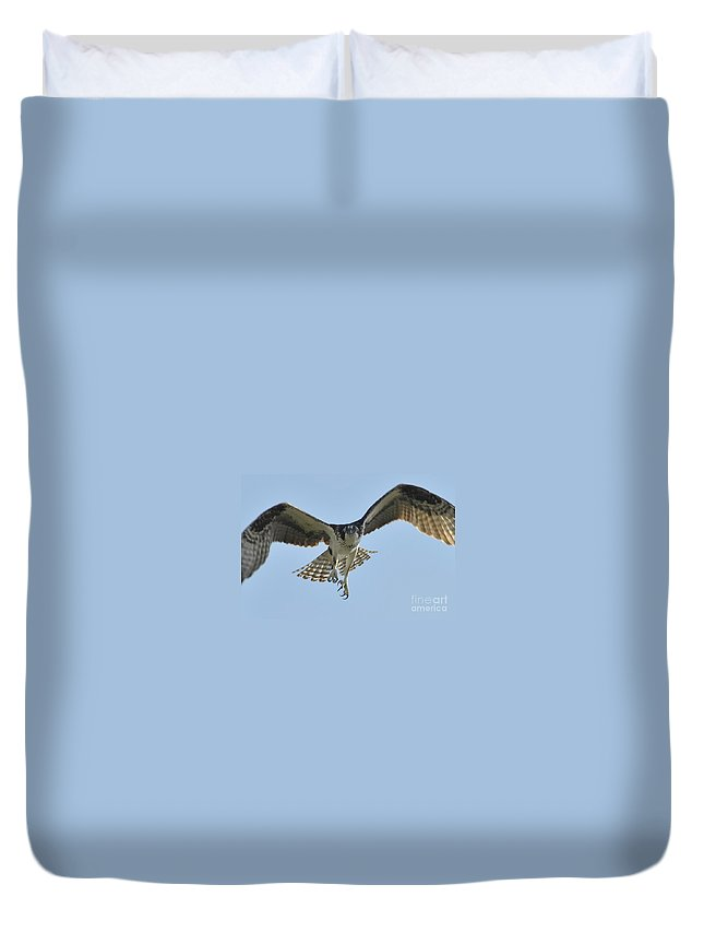 Osprey Duvet Cover featuring the photograph Before The Catch by David Lee Thompson