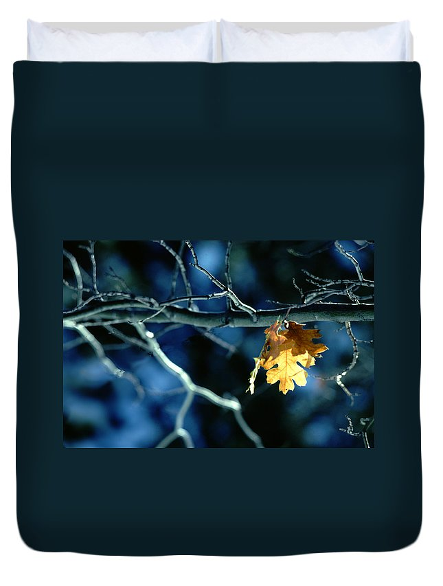 Photography Duvet Cover featuring the photograph Before The Fall by Paul Wear