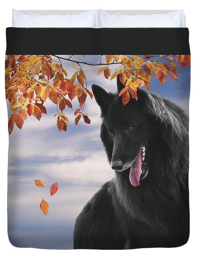 Belgian Shepherd Duvet Cover featuring the photograph Belgian Shepherd With Autumn Leaves 2 by Wolf Shadow Photography