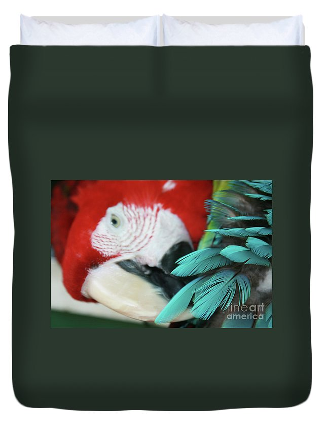 Aloha Duvet Cover featuring the photograph belle Ara Macao oiseaux tropicaux de Maui by Sharon Mau