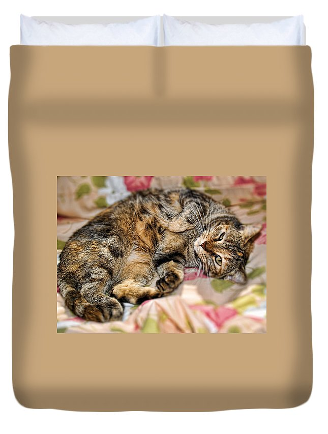 Cat Duvet Cover featuring the photograph Belly Rubs For Emma by Nora Martinez