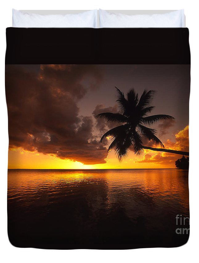 Bent Duvet Cover featuring the photograph Bending Palm by Ron Dahlquist - Printscapes