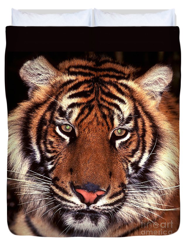 Tiger Duvet Cover featuring the photograph Bengal Tiger - 2 by Paul W Faust - Impressions of Light