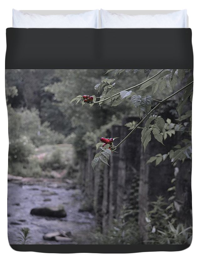Berries Duvet Cover featuring the photograph Berries On A Branch by Hannah Tanner