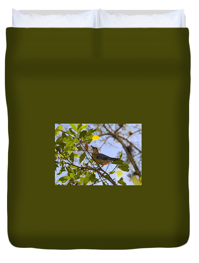 Woodpecker.red Belled Woodpecker Duvet Cover featuring the photograph Berry Good Woodpecker by David Lee Thompson