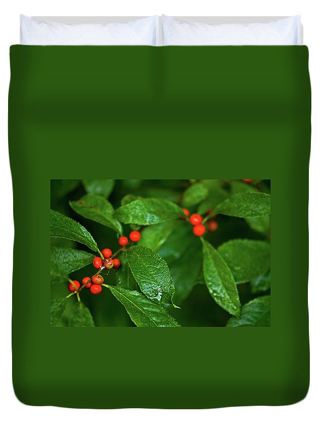 wild Berry's Duvet Cover featuring the photograph Berry's by Paul Mangold