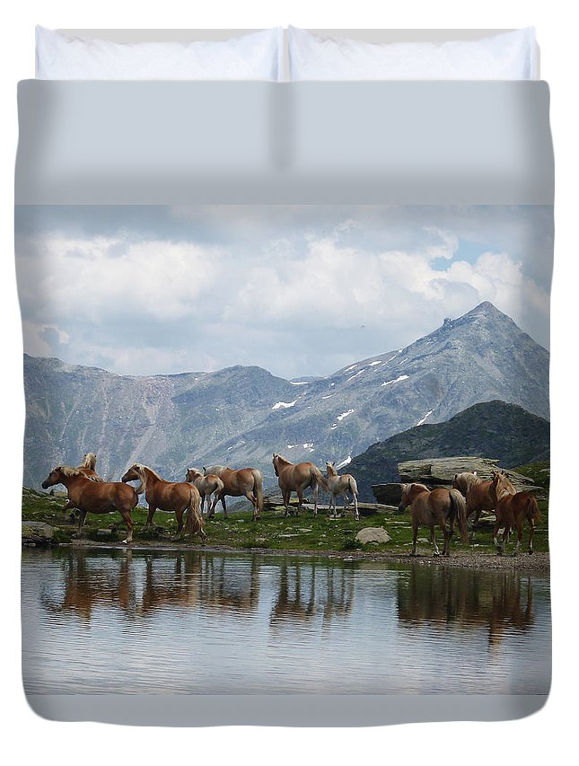 Landscape Duvet Cover featuring the photograph Best Creatures by Laura Greco