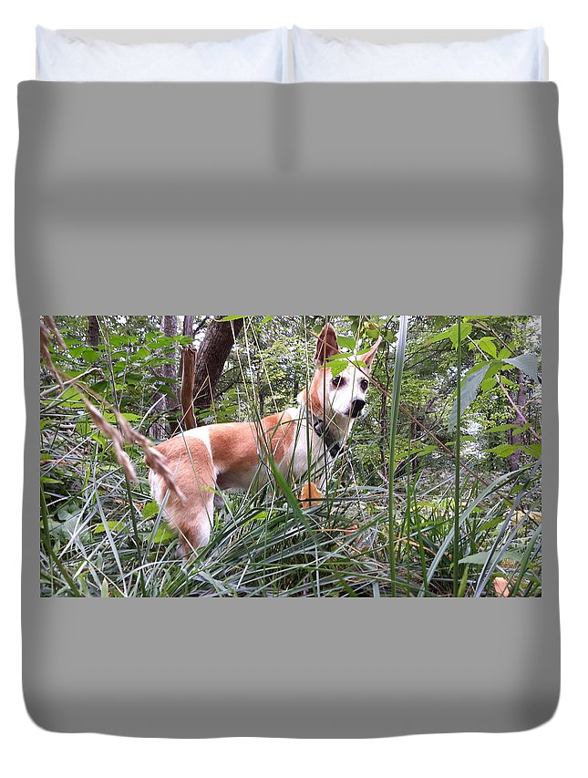 Dog Duvet Cover featuring the photograph Best Friend by Joe D Dry
