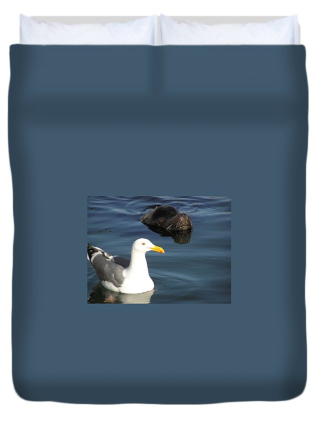 Seagull Duvet Cover featuring the photograph Best Friends by Louise Magno