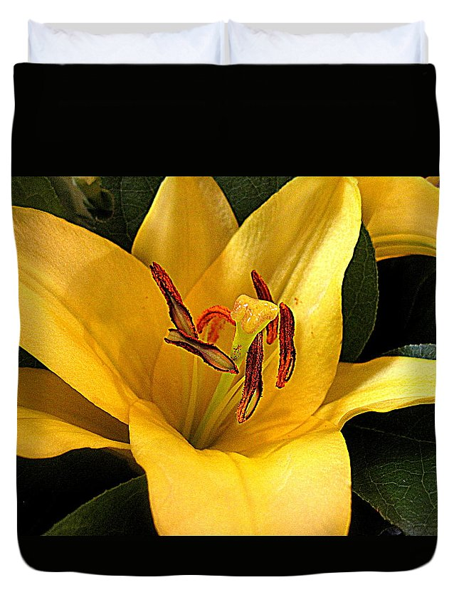 Flowers Duvet Cover featuring the digital art Best Of The Bunch by Bonita Brandt