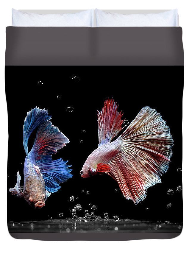 Animal Duvet Cover featuring the photograph Betta1265 by Bang Yos
