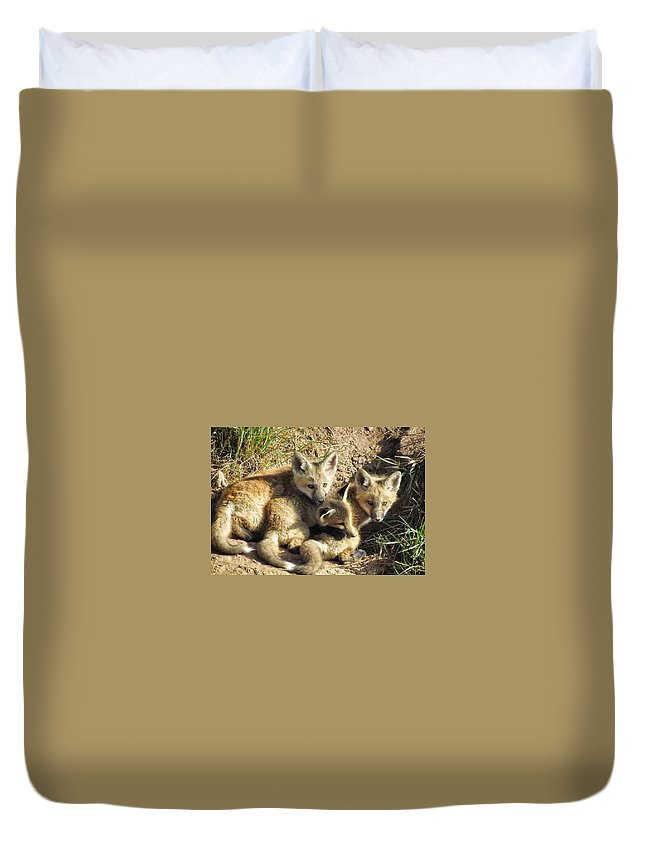 Red Fox Duvet Cover featuring the photograph Better Together by LeAnne Perry