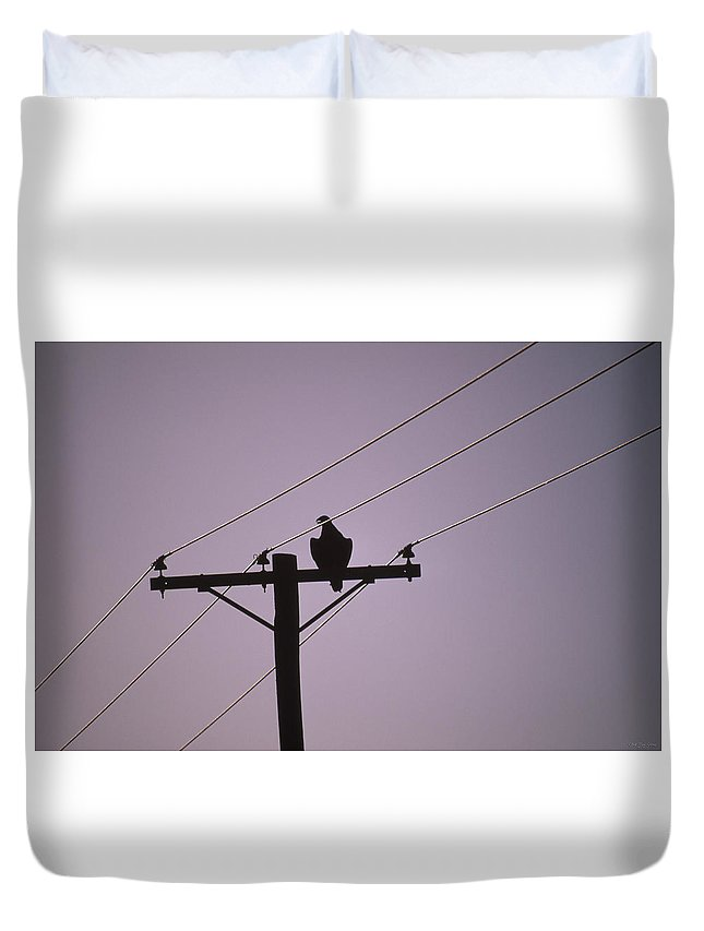 Birds Of Prey Duvet Cover featuring the photograph Between The Lines by Soli Deo Gloria Wilderness And Wildlife Photography
