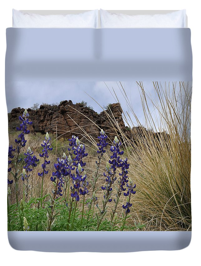 Sky Duvet Cover featuring the photograph Big Bend Bluebonnets by Amy Becker