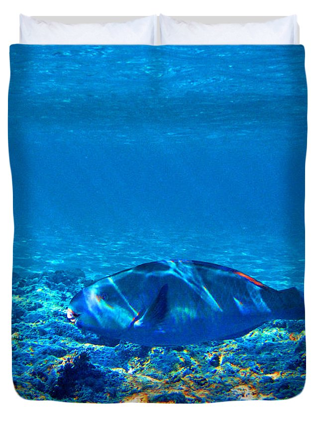 Underwater World Duvet Cover featuring the photograph Big Fish. Underwater World. by Andy Za