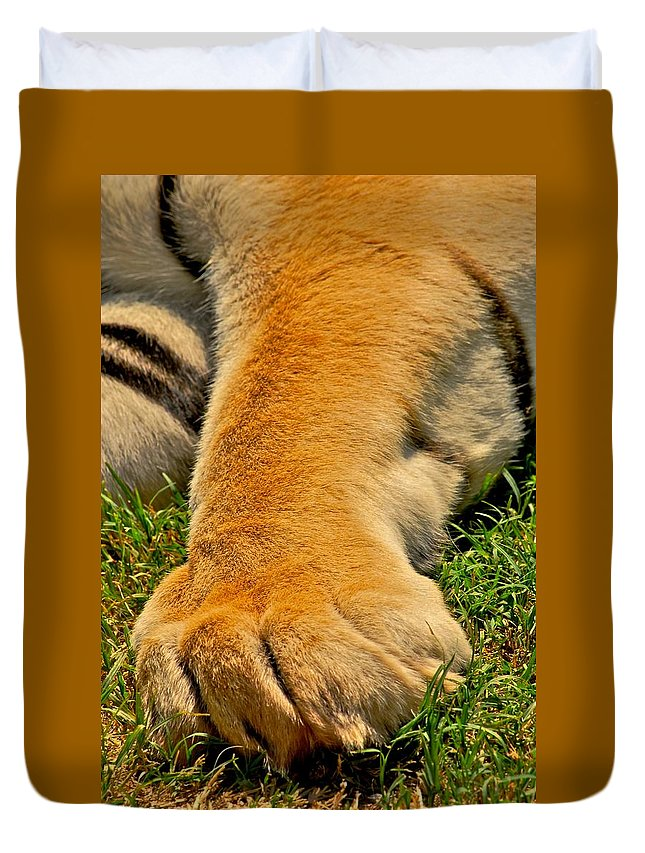Tigers Duvet Cover featuring the photograph Big Foot by Donna Shahan