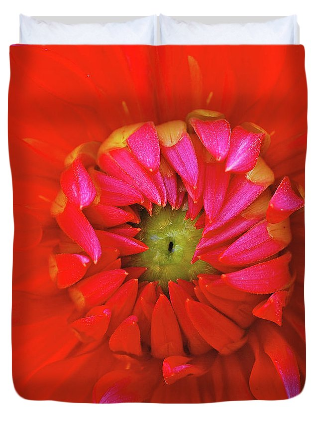 Dahlia Duvet Cover featuring the photograph Big Red by Bill Morgenstern