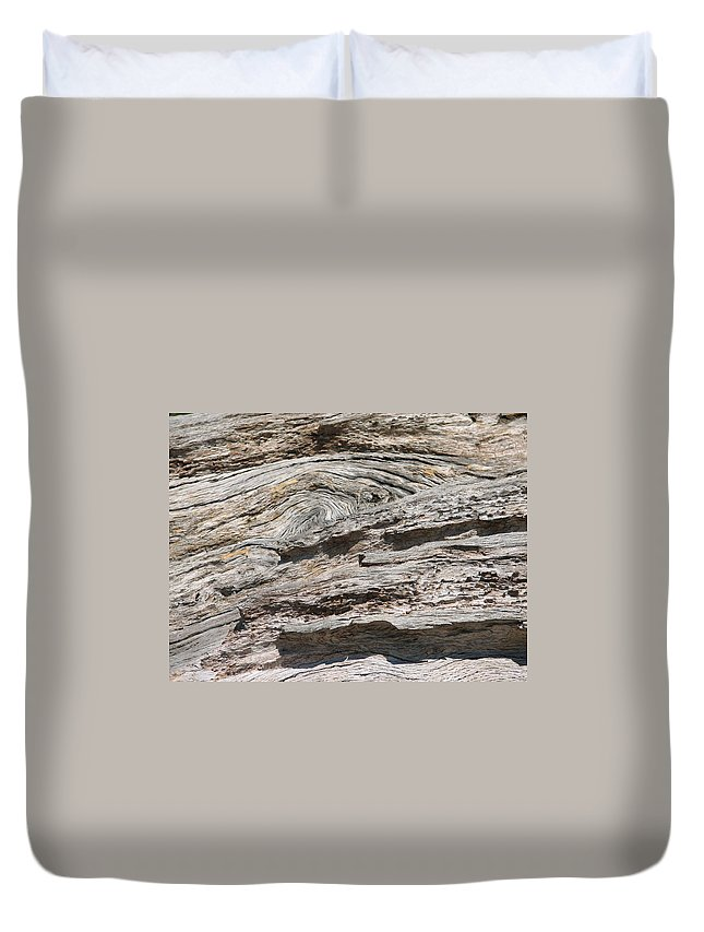 Tree Duvet Cover featuring the photograph Big Tree 5 by Kelly Mezzapelle