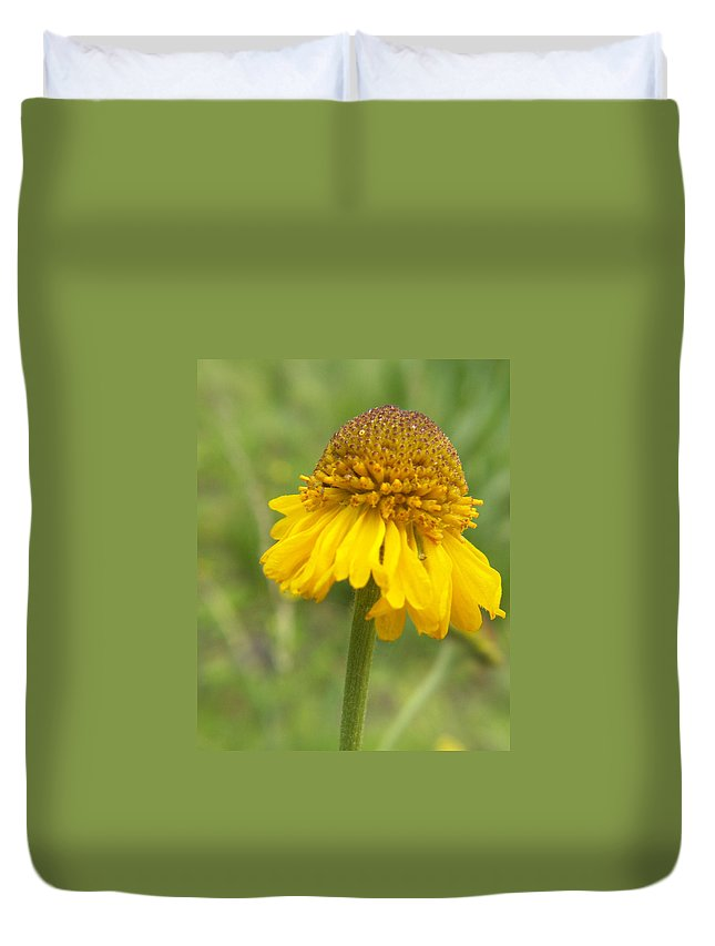Flower Duvet Cover featuring the photograph Bigelow by Amy Fose