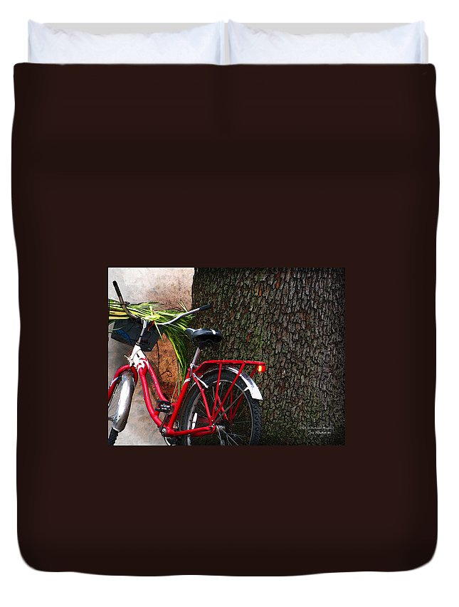 Bicycle Duvet Cover featuring the photograph Bike Resting by Joan Minchak
