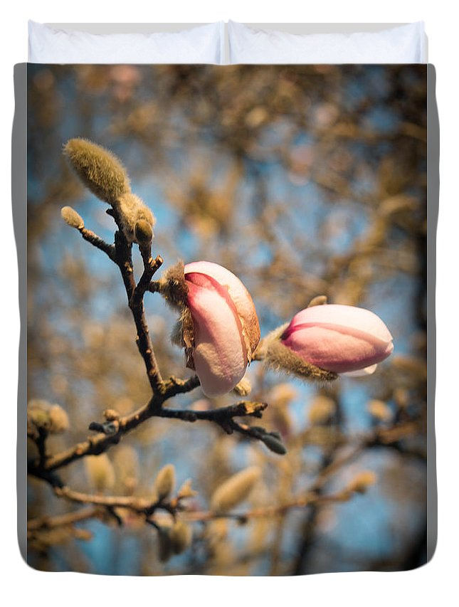 Asheville Duvet Cover featuring the photograph Biltmore Cherry Blossom by Brittany Jordan