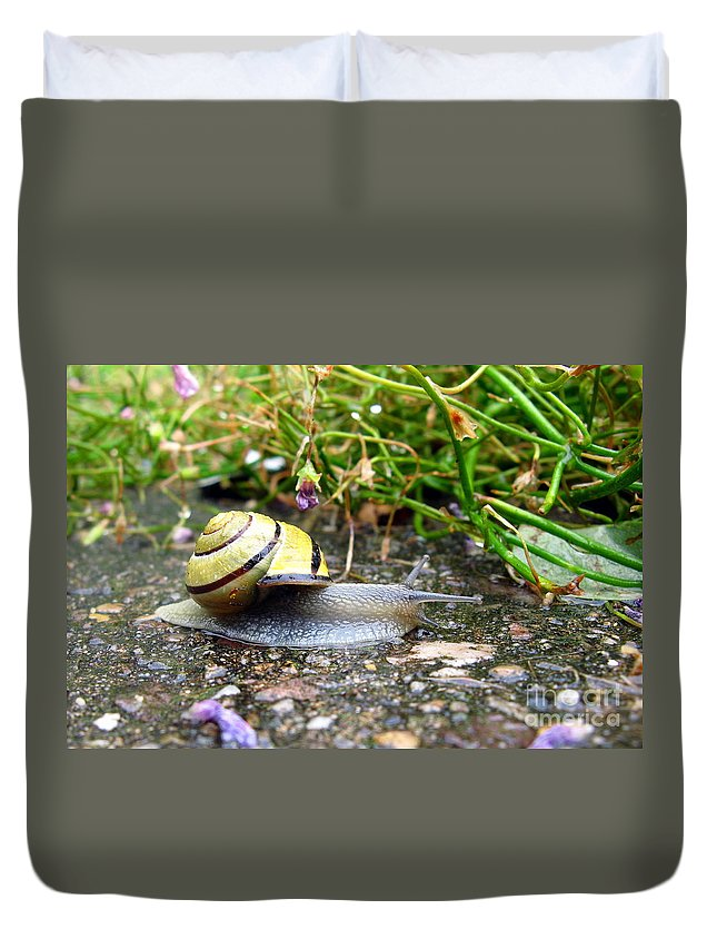 Snail Duvet Cover featuring the photograph Biological Drive Cleaner by John Chatterley