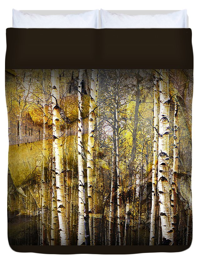 Birch Duvet Cover featuring the photograph Birch Bark And Trees Abstract by Randall Nyhof