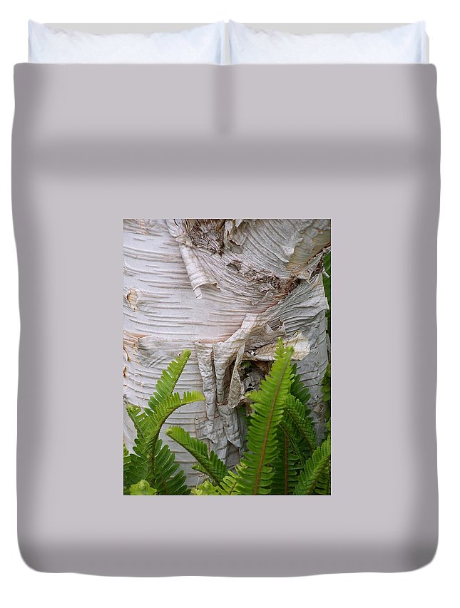 Tree Duvet Cover featuring the photograph Birch Fern by Gale Cochran-Smith