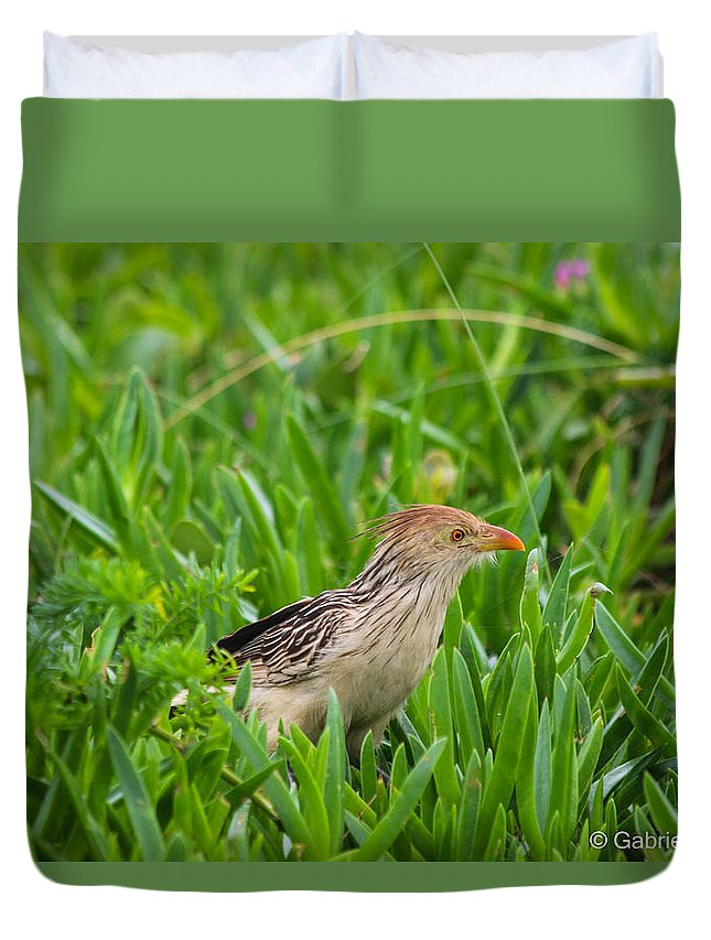 Fly Duvet Cover featuring the photograph Bird by Gabriel Saudades