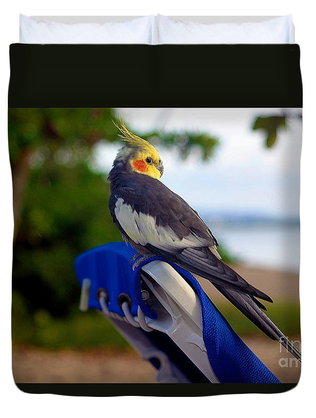 Bird Duvet Cover featuring the photograph Bird In Paradise by Madeline Ellis