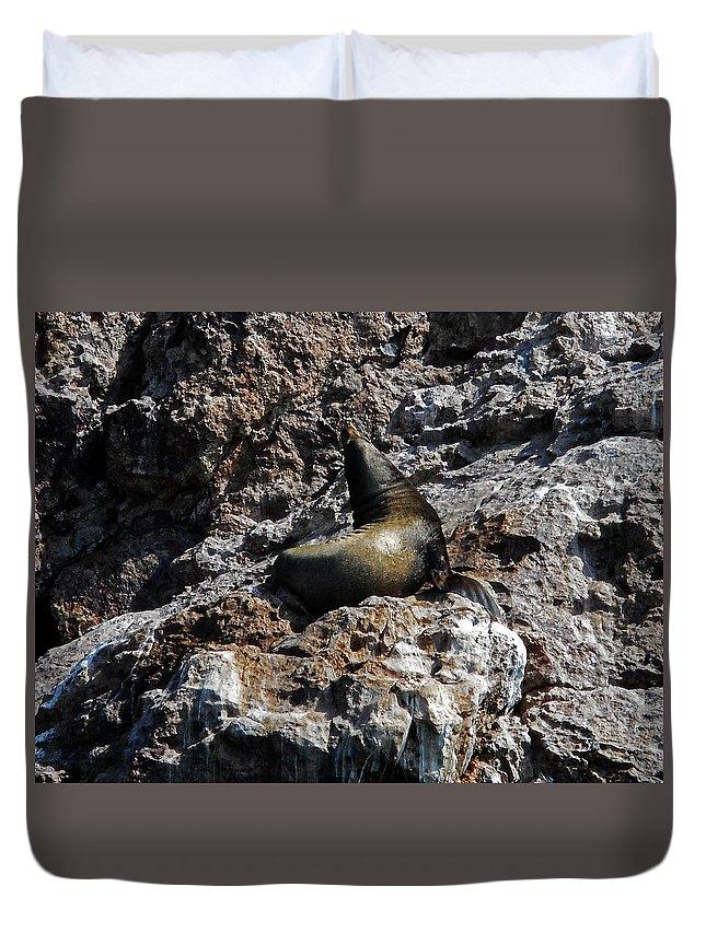 Bird Island Duvet Cover featuring the photograph Bird Island 6 by Ron Kandt