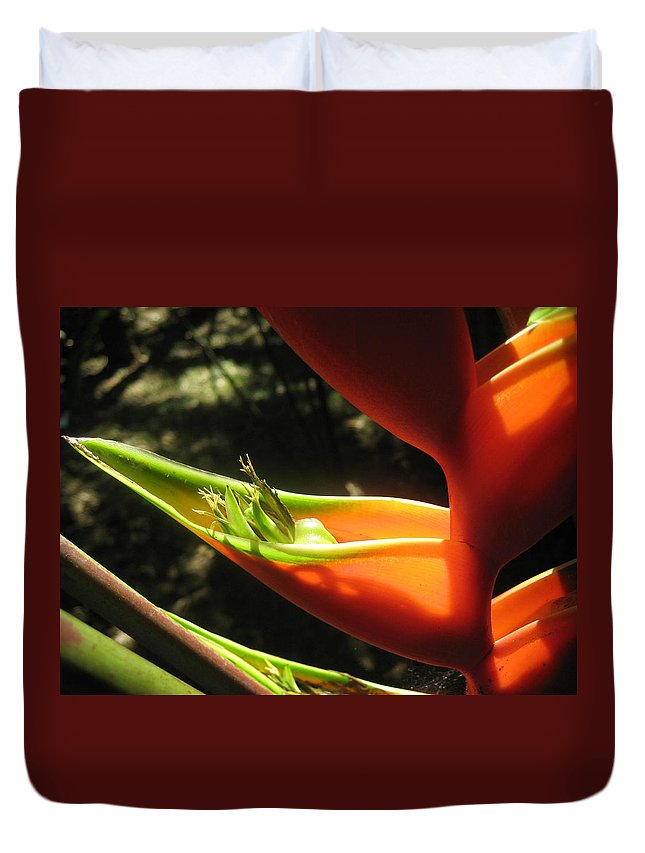 Tropical Plant Duvet Cover featuring the photograph Bird Of Paradise by Andrea Freeman