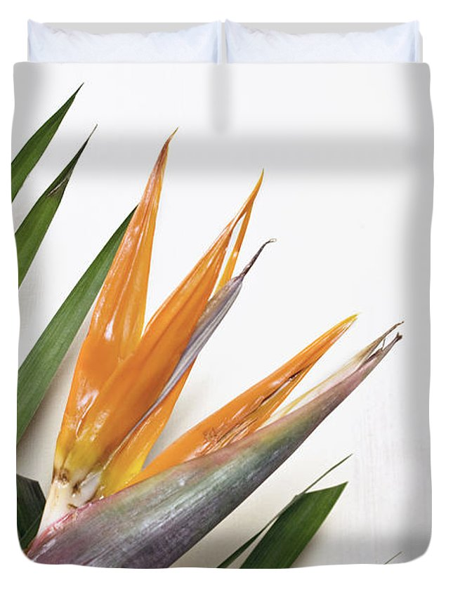 Flowers Duvet Cover featuring the photograph Bird Of Paradise by Cindy Garber Iverson