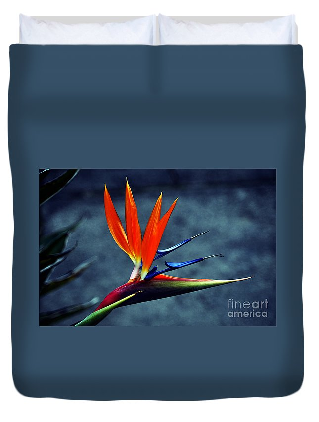 Clay Duvet Cover featuring the photograph Bird Of Paradise by Clayton Bruster
