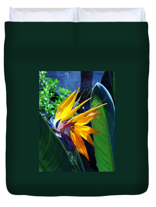 Flowers Duvet Cover featuring the photograph Bird Of Paradise by Susanne Van Hulst