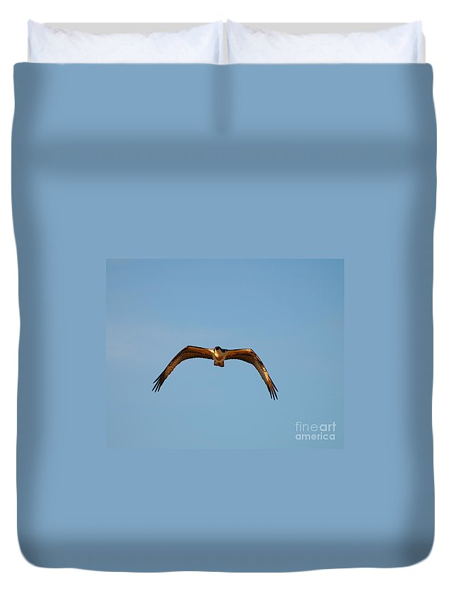 Clay Duvet Cover featuring the photograph Bird Of Prey by Clayton Bruster