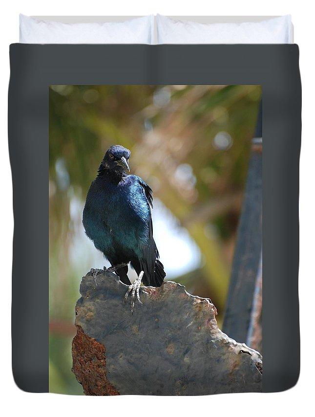Bird Duvet Cover featuring the photograph Bird On An Anchor by Rob Hans