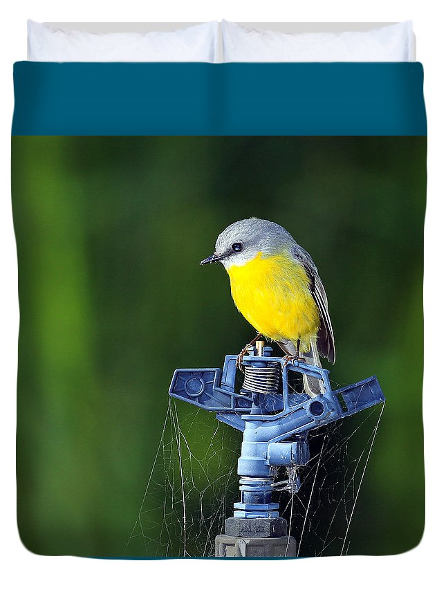 Bird On A Old Dry Water Sprinkler In Drought In Australia Duvet Cover featuring the photograph Bird Siting On A Water Sprinkler by David Trent