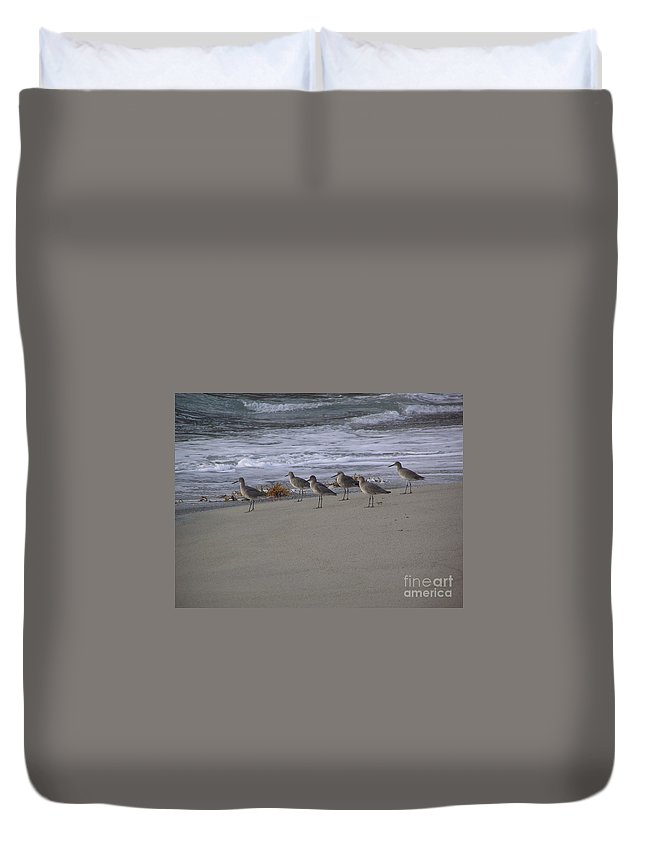 Birds Duvet Cover featuring the photograph Bird Walk by Louise Magno