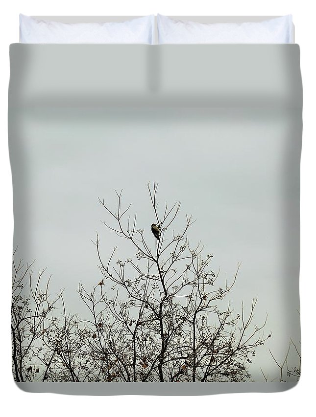 Duvet Cover featuring the photograph Bird005 by Jeff Downs
