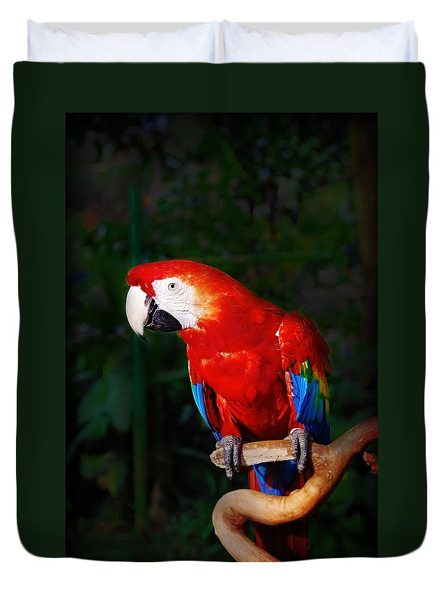 Bird Duvet Cover featuring the photograph Birdie by Charuhas Images