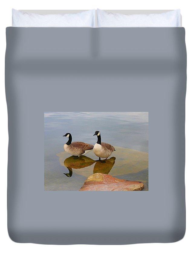 Bird Duvet Cover featuring the photograph Birds by Bijna Balan