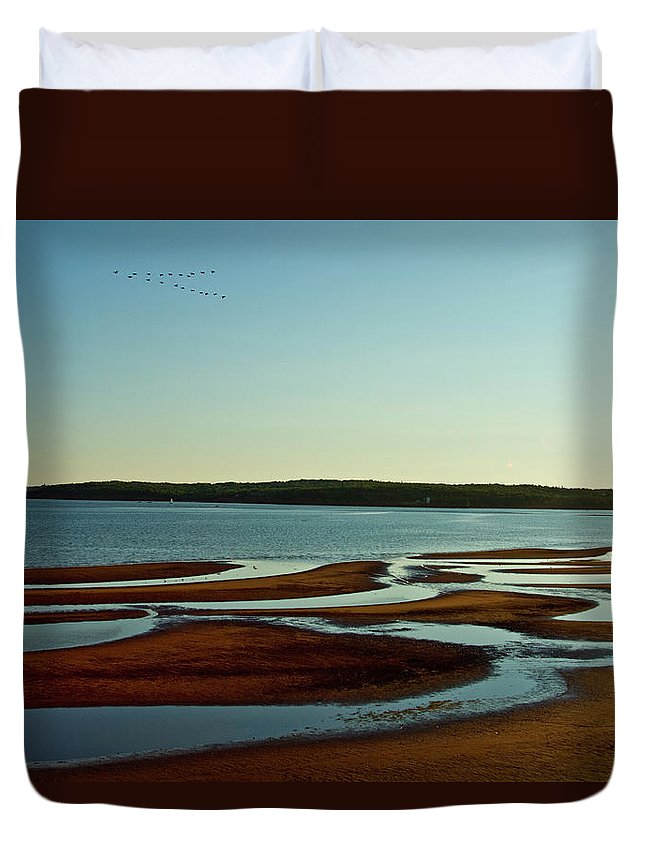 Beach Duvet Cover featuring the photograph Birds Flying At Keppoch by Nicola Hubbard