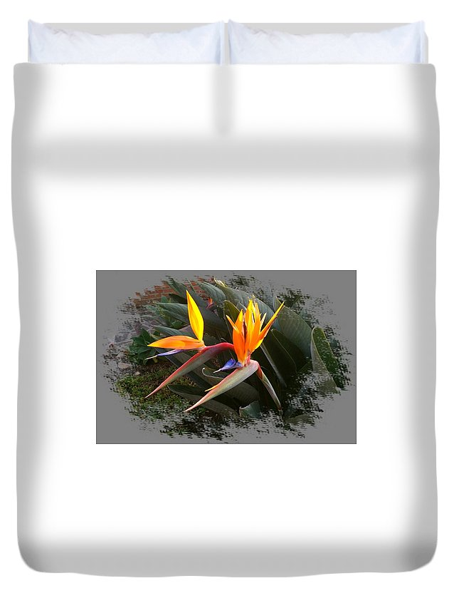 Bird Of Paradise Duvet Cover featuring the digital art Birds Of Paradise by Max DeBeeson
