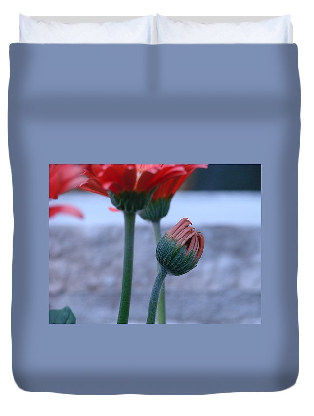 Flora Duvet Cover featuring the photograph Birth Of A Flower by Mary Halpin
